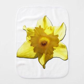 Paninho De Boca Daffodil 1.5.5.b da trombeta amarela