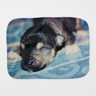 Paninho Para Bebês Cuspe-Acima com crista chinês calvo do cão de