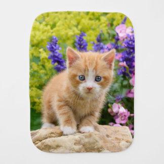 Pano De Boca Gatinho bonito do gato do gengibre no retrato