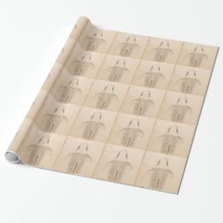 Papel De Presente Carpa do koi do vintage que pinta a arte de papel