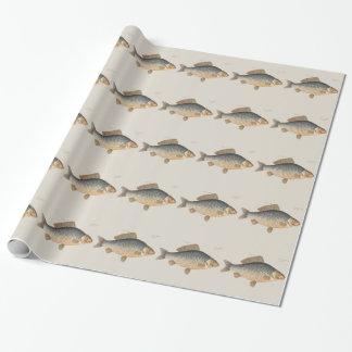 Papel De Presente Desenho dos peixes de água doce da carpa do