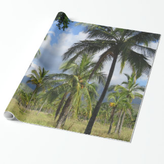 Papel De Presente Floresta da palma de coco