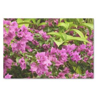 Papel De Seda Bougainvillea roxo tropical