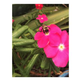 Papel Timbrado abelha