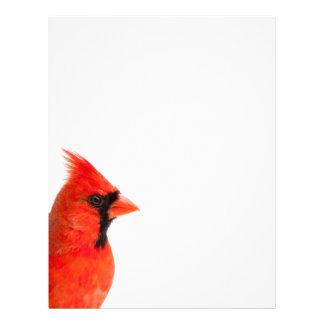 Papel Timbrado Pássaro cardinal