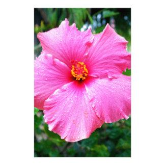 Papelaria A chuva cor-de-rosa do hibiscus polvilha,