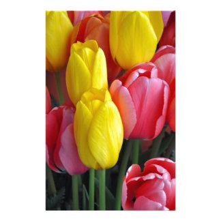Papelaria Buquê colorido das tulipas do primavera