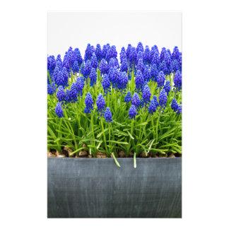 Papelaria Caixa cinzenta da flor do metal com os jacintos de