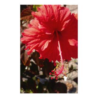 Papelaria Flor tropical do hibiscus
