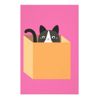 Papelaria Gato na caixa