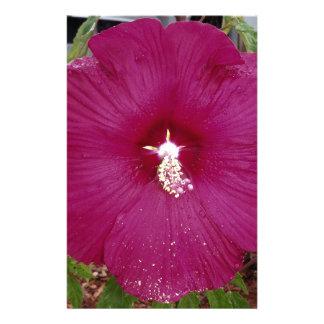 Papelaria grande obscuridade - hibiscus vermelho