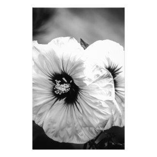 Papelaria Hibiscus da placa de comensal