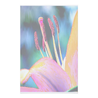 Papelaria Hibiscus Funky