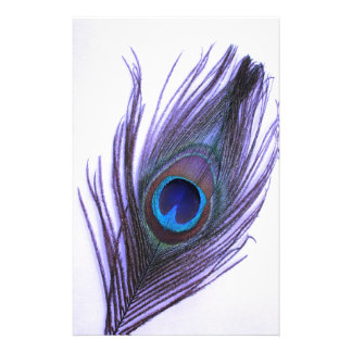 Papelaria Pena roxa do pavão