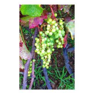 Papelaria Uvas naturais