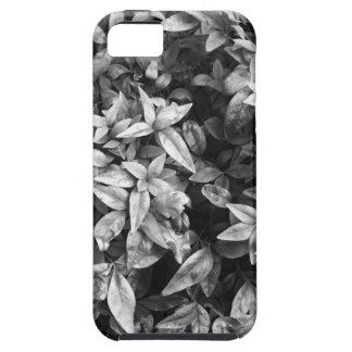 Para floral preto & branco do amor - capa para iPhone 5