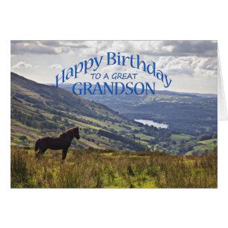 Para o neto um cartão de aniversário do cavalo e d