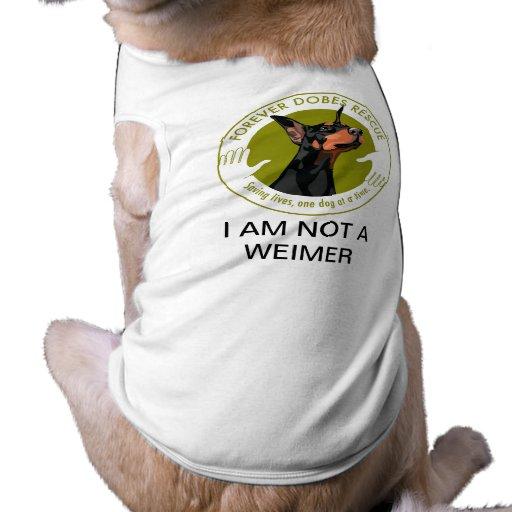 Para sempre camisa da jovem corça de Dobes Roupas Para Pets