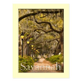 Parque de Forsyth - savana, GA Cartão Postal