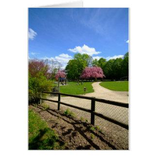 Parque do Prunus no filme de Velvia Cartoes