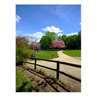 Parque do Prunus no filme de Velvia Cartão Postal