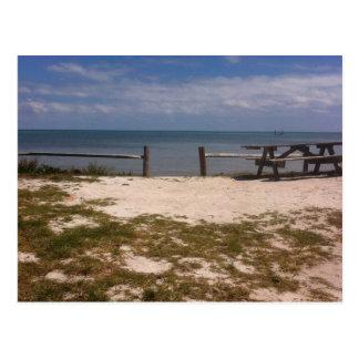 Parque estadual chave longo, Florida Cartão Postal