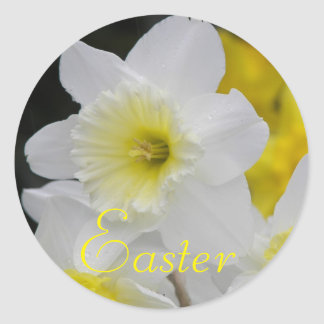 Páscoa floral do Daffodil Adesivo