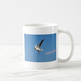 Pássaro da gaivota caneca de café