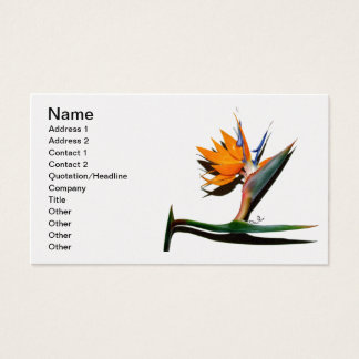 Pássaro de paraíso com cartão de visita da sombra