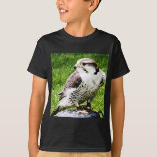 Pássaro do falcão da rapina #1-peregine camisetas