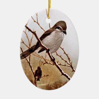 Pássaro do norte da greve ornamento de cerâmica oval