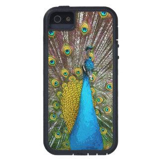 Pássaro majestoso do pavão em máscaras capas para iPhone 5