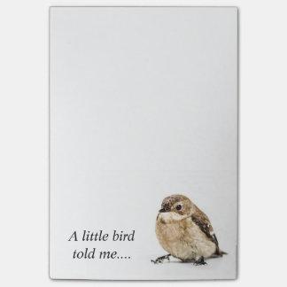 Pássaro pequeno post-it note