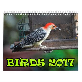 Pássaros 2017 calendário