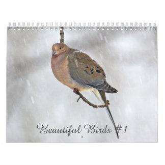 Pássaros bonitos #1 do calendário