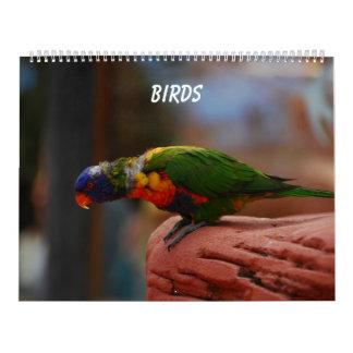 Pássaros Calendário