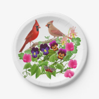 Pássaros cardinais do norte nas placas de papel do