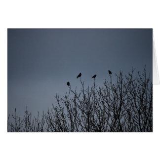 Pássaros de suspensão cartão