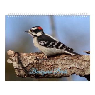 Pássaros do quintal, calendário