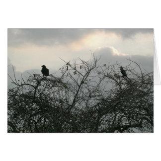 Pássaros na tempestade cartão
