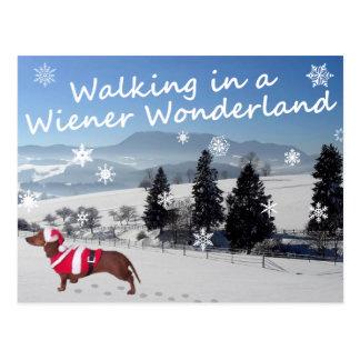 Passeio em um país das maravilhas do Wiener Cartão Postal