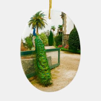 Pavão perto de um castelo em Portugal do norte Ornamento De Cerâmica Oval