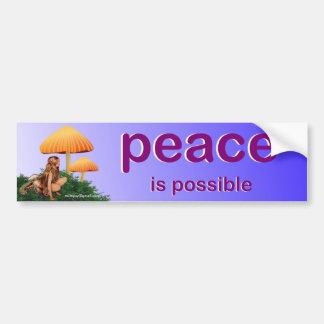 paz adesivo para carro