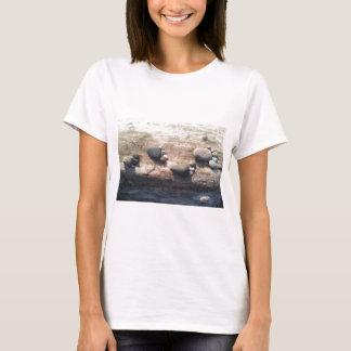 Pegadas da rocha t-shirt