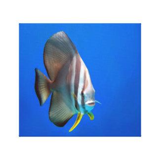 Peixes azuis do bastão impressão em tela