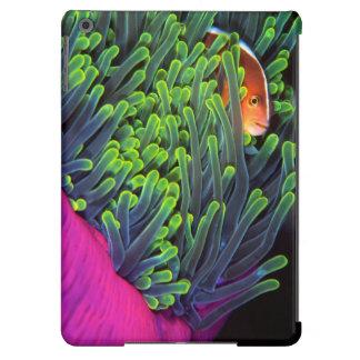 Peixes de anêmona que escondem na anêmona, capa para iPad air