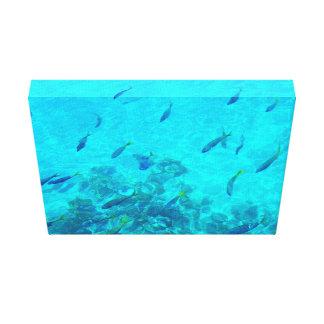 Peixes tropicais do grande recife de coral impressão em canvas