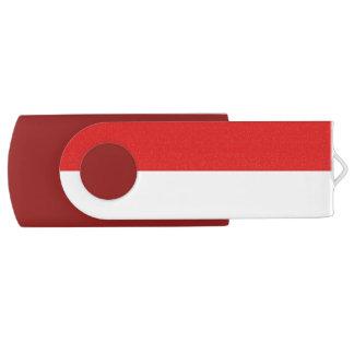 Pen Drive Giratório Chave USB Alsácia
