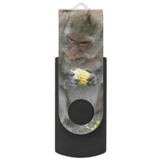 Pen Drive Giratório É meu!! … Macaco de Macaque tailandês selvagem