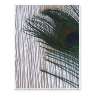 Pena do pavão com branco
